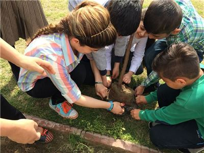 Tree Planting at School (Soran I.S)